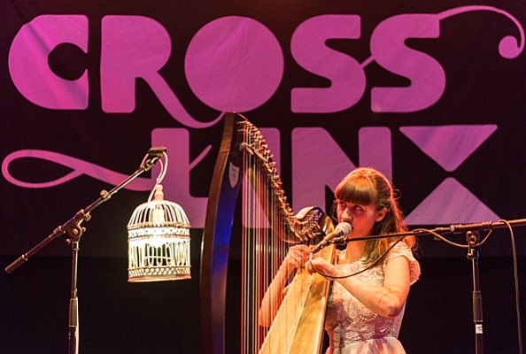 Cross-Linx 2016